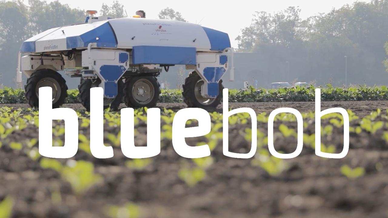 BlueBob – la vidéo
